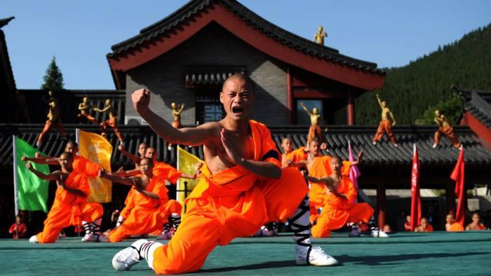 Chinese Wushu Kungfu