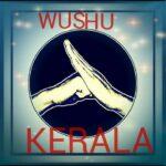 Kerala - Wushu